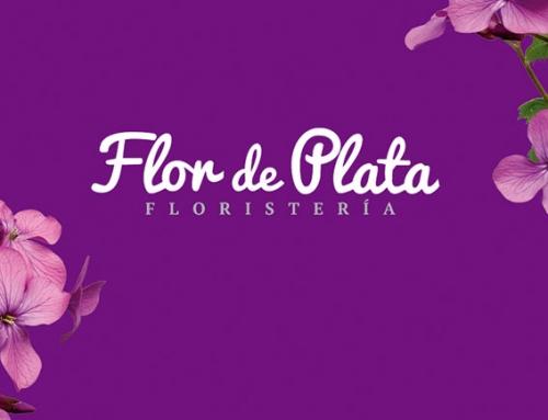 SEO en un Click empieza a trabajar con Flor de Plata