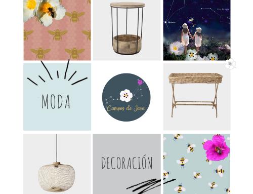 Diseño página web Finca Campos de Jara